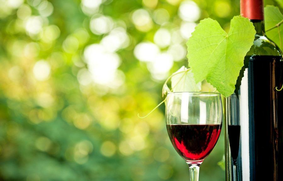 promotion vins du Gers