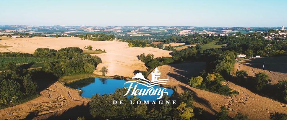 promotions foie gras Sud-Ouest 2018