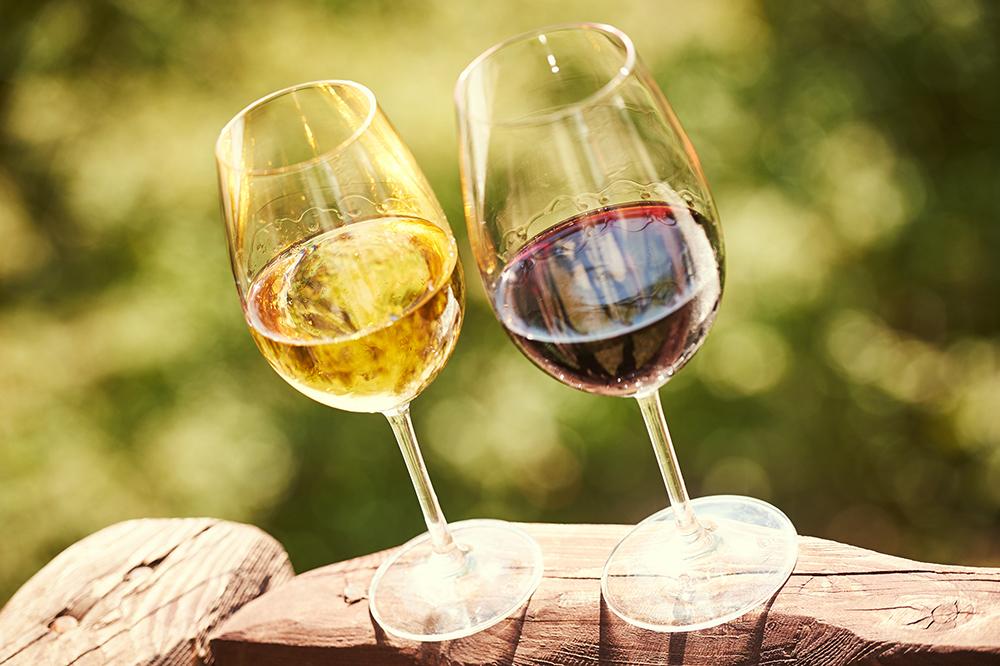 foire aux vins, blanc de Gascogne en promotion